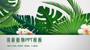 PPT template seductive fresh green plants