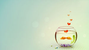 A pair of cute little goldfish rubbing out of love sparks ppt picture