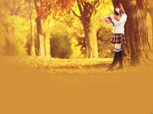 Autumn leaves beautiful ppt background pictures