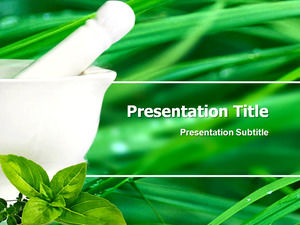 Chinese herbal medicine - pharmaceutical industry ppt template