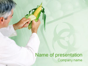 Corn seed research ppt template