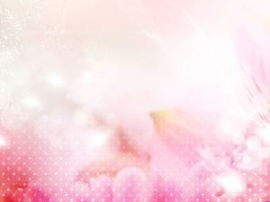 Featured a set of elegant pink ppt background picture 14 sheets