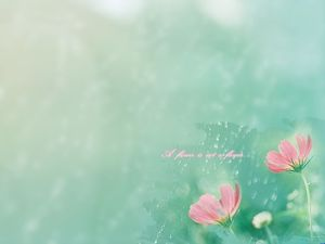 Flower fog ppt light background picture