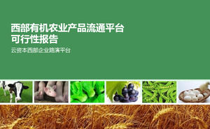 Organic agricultural products circulation platform PPT report