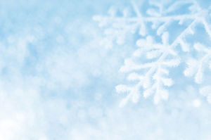 Snowflake petal background light blue ppt picture