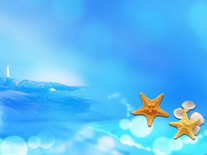 Starfish shell blue ocean background picture