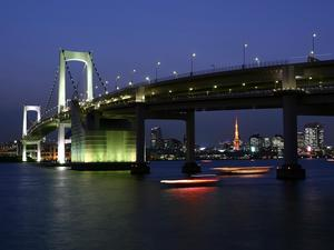 Waterfront night view of the bridge business background picture