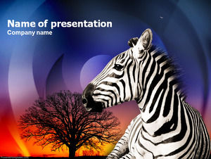 Zebra animal ppt template